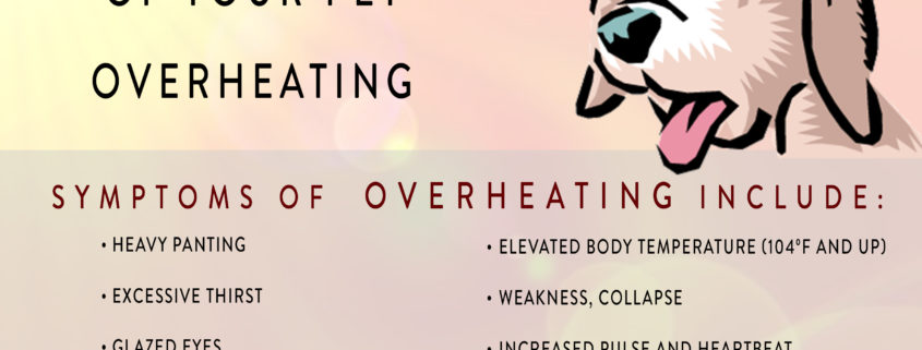 Overheating infographic.